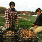 FARM JOB: Wakefield, QC – Juniper Farm, General Manager