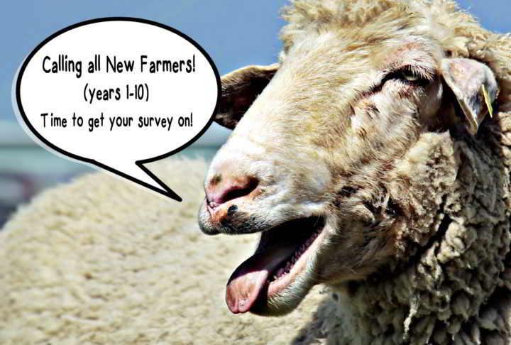 YA-Sheep-Survey-CTA