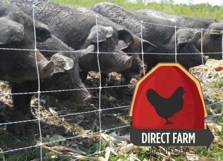 direct-farm-manitoba