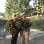 FARM JOB: DUNCAN, BC – Glenora Farm, Field Hand