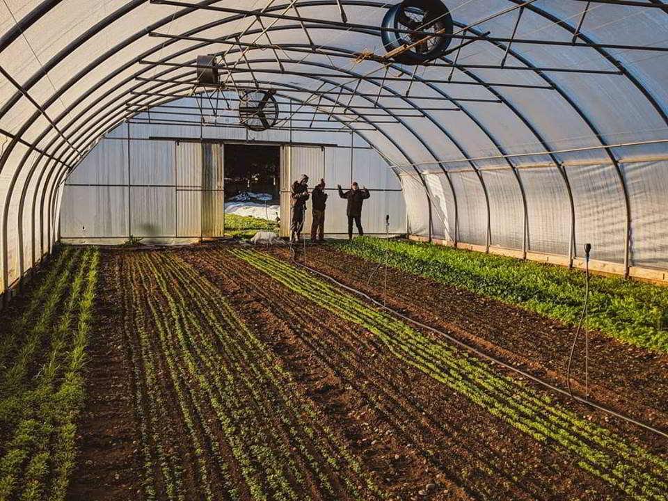 zaklan heritage farm