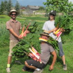 FARM JOB: WINDERMERE, BC – Edible Acres Farm and Cafe/ Winderberry, Farm Assistant & Soil Technician