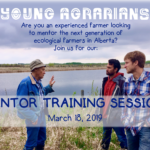 March 18: Mentor Training Session
