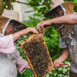 FARM JOB: VANCOUVER, BC – Hives for Humanity, Lead Beekeeper