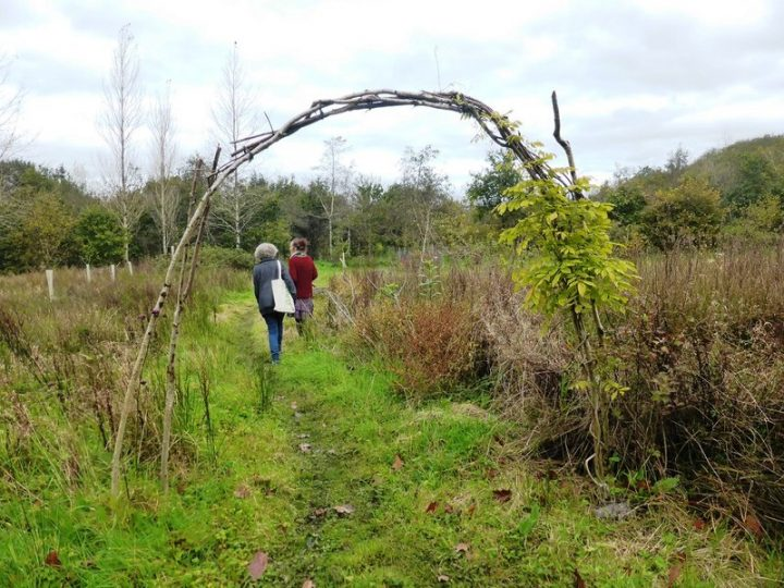 permaculture design tofino vargas island cedar coast field station