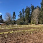 LAND OPPORTUNITY: 1/2 ACRE OF ESTABLISHED FARM SPACE, MENTORSHIP AND PAID FARM WORK – NANAIMO, BC