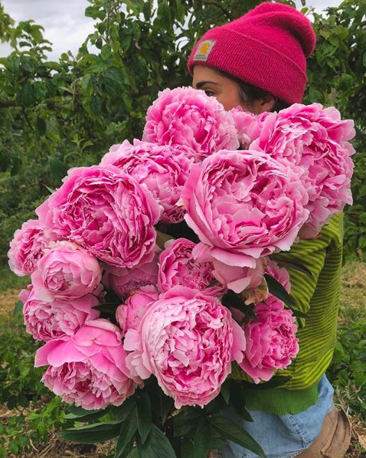 ubc farm flower farm job