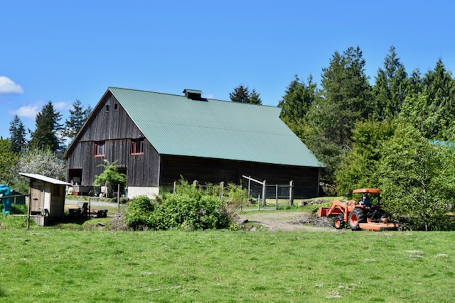 barn, yellow point farms, ladysmith bc, farm jobs