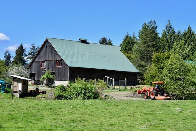 barn, yellow point farms, ladysmith bc, farm jobs
