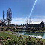 UNAVAILABLE – LAND OPPORTUNITY: GARDEN SPACE AT UNSWORTH VINEYARD – MILL BAY, BC