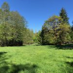 LAND OPPORTUNITY: 12 ACRES OF PASTURE FOR GRAZING – COBBLE HILL, BC
