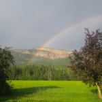 FARM JOB: ENDERBY, BC – Fre-Da-Ro Farm, Organic Farm Worker
