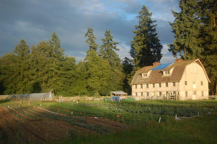 a rocha farm, farm job, surrey bc