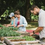FARM JOB: SURREY, BC – A Rocha Farm, Brooksdale Farm Assistant