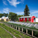 FARM JOB: EDMONTON – Northlands Urban Farm, Education Coordinator