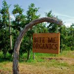 FARM JOB: KELOWNA, BC – Bite Me Organics, Orchard Worker