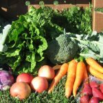 FARM JOBS: KELOWNA, BC – Helen's Acres Community Farm, Agricultural Workers