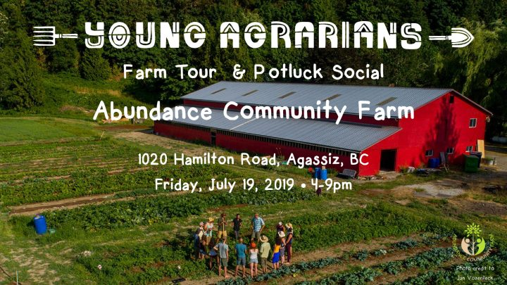 abundance community farm, agassiz, july 19, farm tour potluck