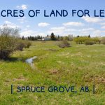 LAND OPPORTUNITY: 15 Acres for lease, Spruce Grove, Alberta