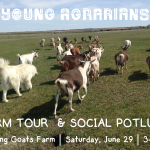 JUNE 29, 2019: ACME, AB – Farm tour & potluck social at Dancing Goats Farm