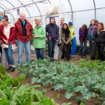 New farmers & Food Policy in Canada – Survey Results