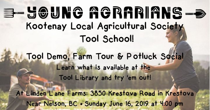 tool school krestova nelson linden lane farms