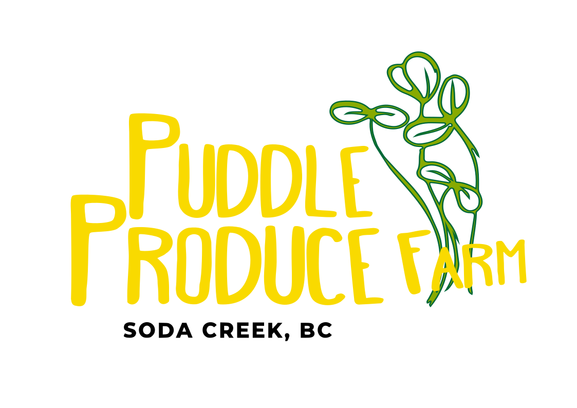 puddle produce, williams lake, farm job