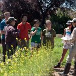 Ecological Workshops for Small-Scale Farmers – Vancouver Summer 2019