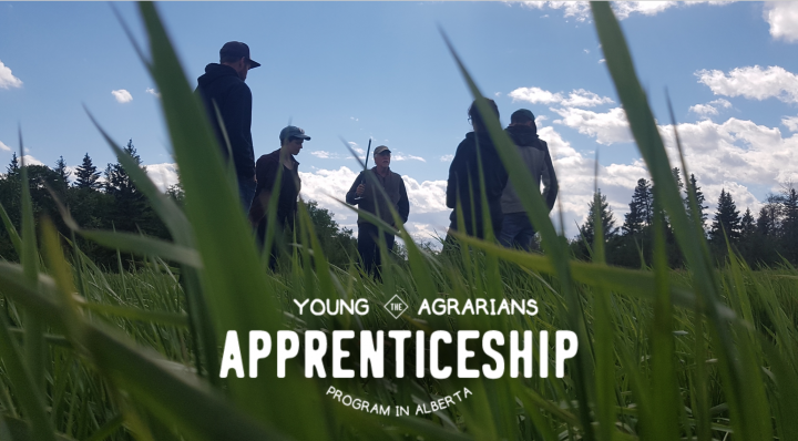 Young Agrarians Alberta Apprenticeship Program, farm, 2020