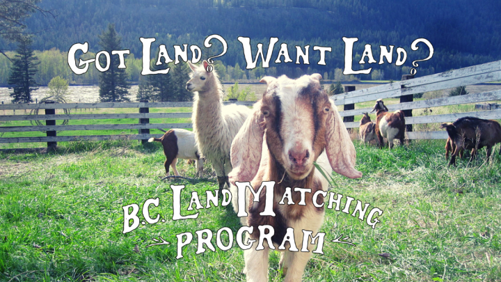 Copy of BCLMP - Land Blog Header - LO Dan Mousseau