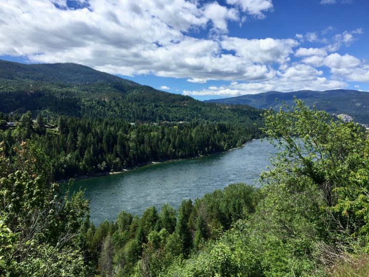 The Columbia River in Castlegar