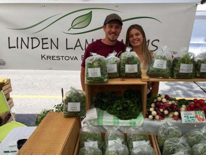 Linden Lane Farms, Krestova