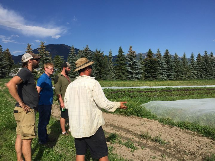 Oliver leads a farm tour of Edible Acres