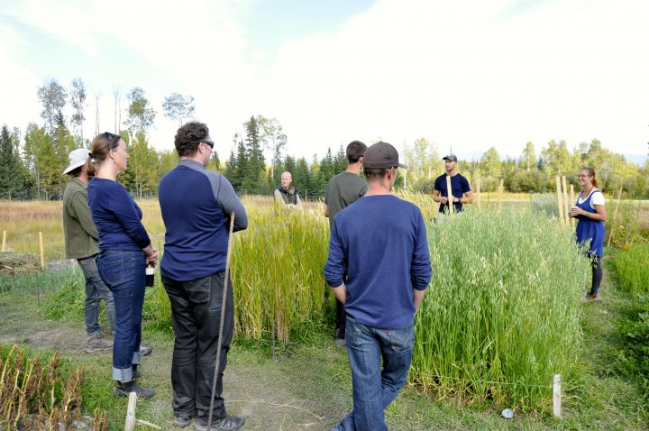 Bio-intensive Growing workshop with Kootenay Society for Sustainable Living in Meadowbrook, 2018
