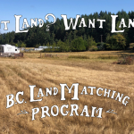 LAND OPPORTUNITY: 3/4 ACRE PASTURE OPEN TO IDEAS – COBBLE HILL, BC