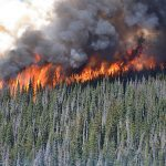 Training Courses Covered Through Wildfire Recovery Program in BC