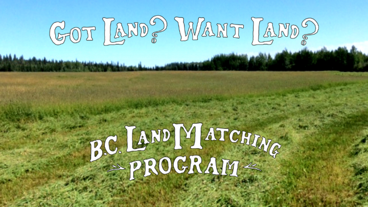 Copy of BCLMP - Land Blog Header - TEMPLATE(1)