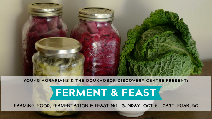 Ferment-and-Feast-Banner