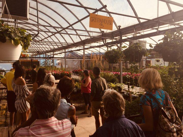 Morris greenhouses