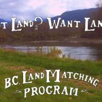 LAND OPPORTUNITY: 10 acre Productive Homestead, Malakwa, BC