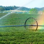 Young Agrarians Water Use & Drainage Manual
