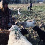 EVENT RECAP: Forrest Farm Tour & Potluck ~ Salmo