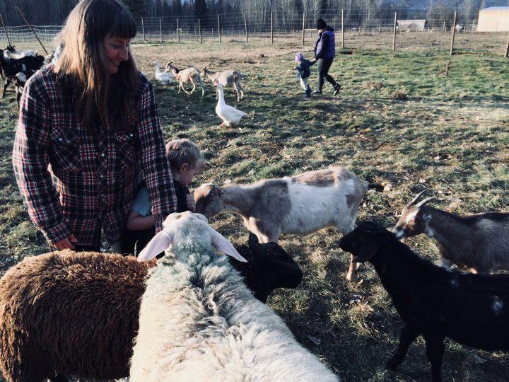 Amanda Forrest of Forrest Farm, Salmo