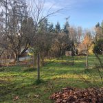 LAND OPPORTUNITY: 2 Bedroom Suite with garden for food production available for rent – Cowichan Station, BC