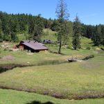 FARM TRANSITION OPPORTUNITY: 31 Acre Gulf Island Bio-dynamic Farm and Vineyard, Lasqueti Island, BC