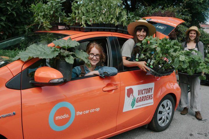 victory gardens, vancouver, farm jobs