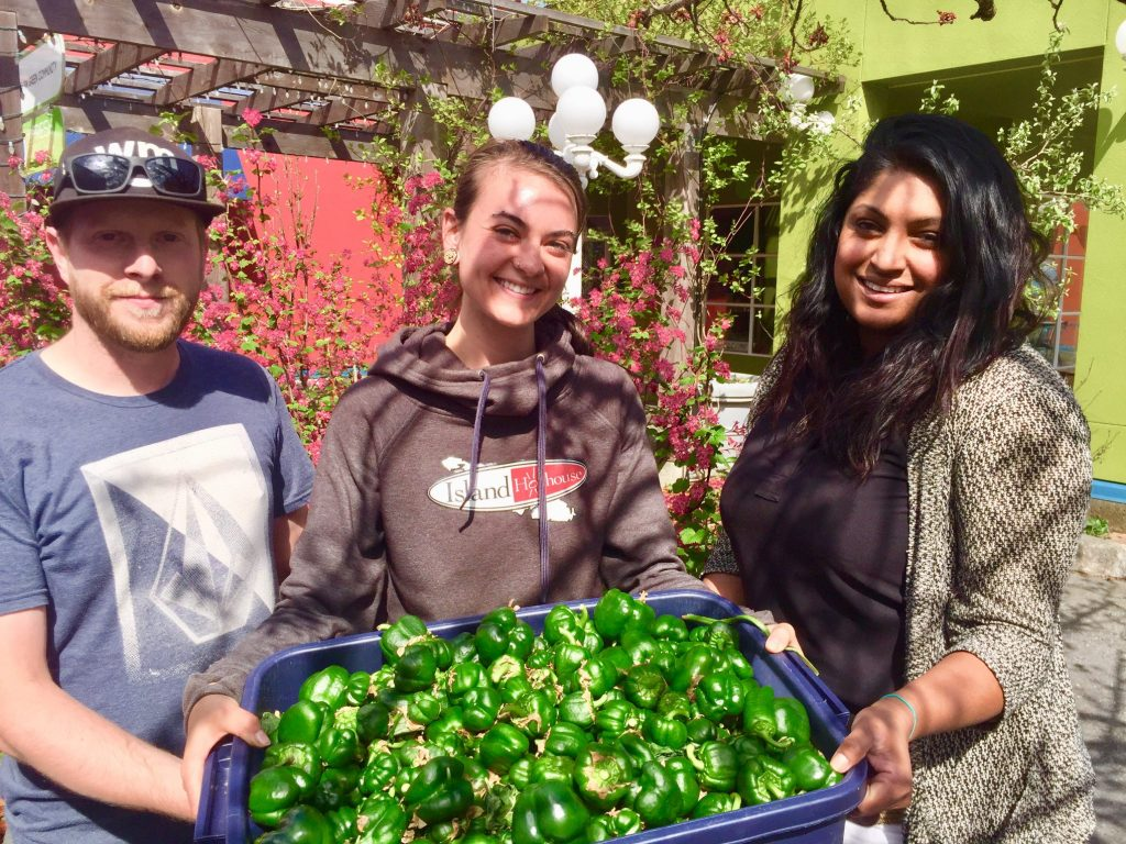 cowichan green community, job, duncan