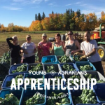 YA Apprenticeship 2020: Sunrise Gardens – Onoway, AB