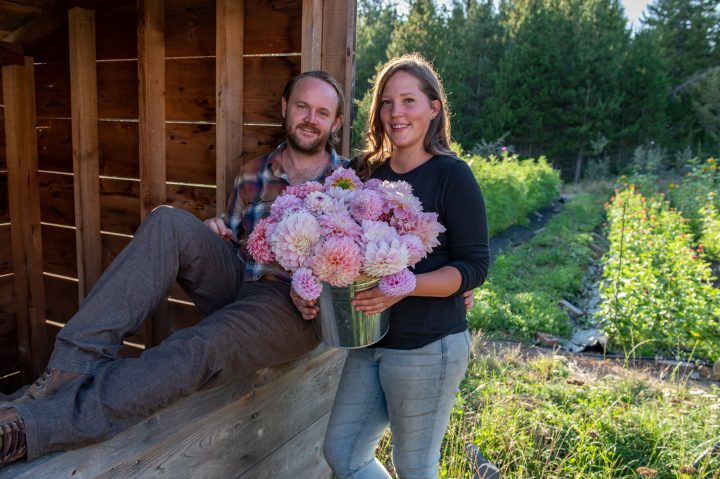 island flower farm, farm job, vancouver island, qualicum beach