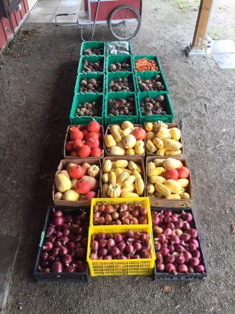 stable harvest farm, langley, vancouver, farm job